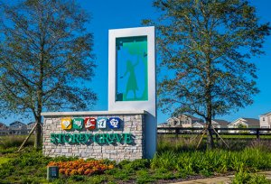 Storey Grove | 佛罗里达州的投资物业 | 佛罗里达州的休息室